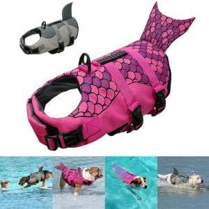 Dog Life Vest: A Swimming Jacket For Your Pet